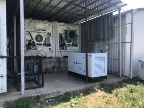Дизельный генератор Исток 60 квт в Краснодар